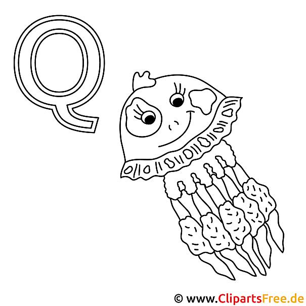 Qualle Ausmalbild - Alphabet zum Ausmalen