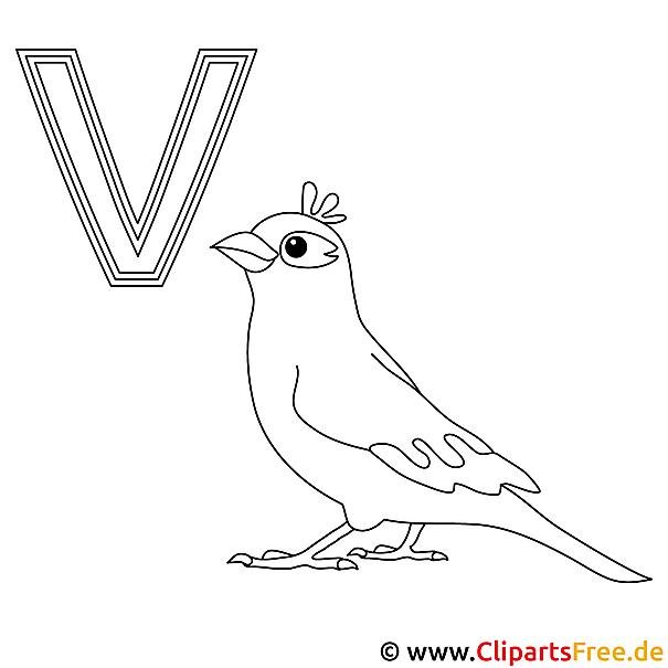 Vogel Ausmalbild - Buchstaben malen Vorlagen