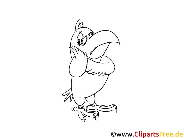 Cartoon Papagei Malvorlage kostenlos
