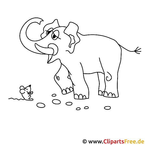 elefant bild zum ausmalen