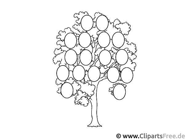 Stammbaum bild zum ausmalen - Malvorlage stammbaum ...