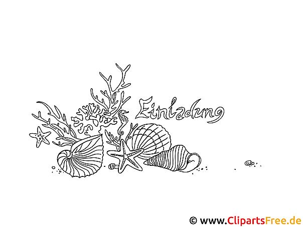 Muschel Malvorlage | ambiznes.com