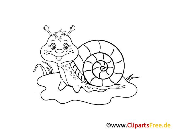 Darmowa kolorowanka do wydruku ślimak