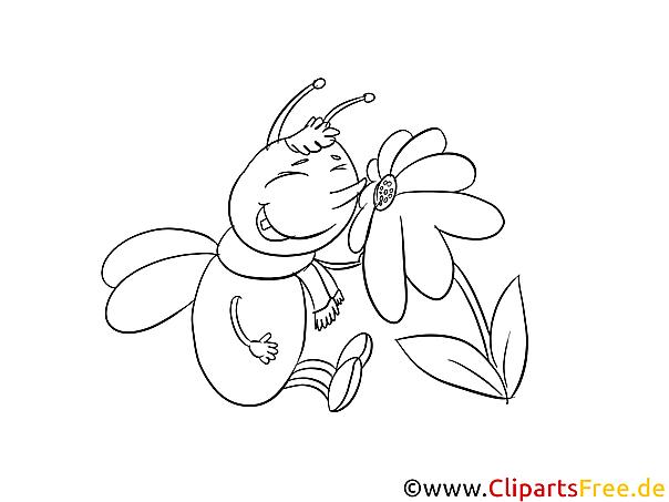 Ausmalbilder Schmetterlinge Blumen : Insekten Ausmalbilder Kostenlos Zum Ausdrucken