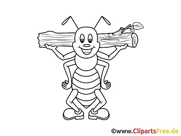 Kolorowanka Mrówka - Kolorowanki dla dzieci do druku
