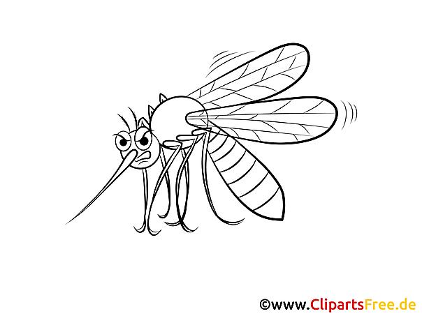 Sivrisinek boyama sayfalarını indirin