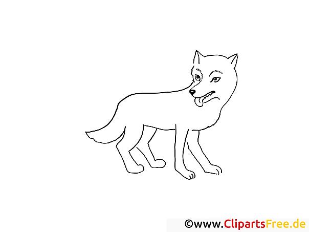 Wolf Bild Zum Ausmalen