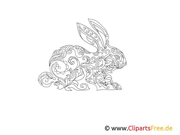 Kaninchen Hase Ausmalbild Für Erwachsene Tiere