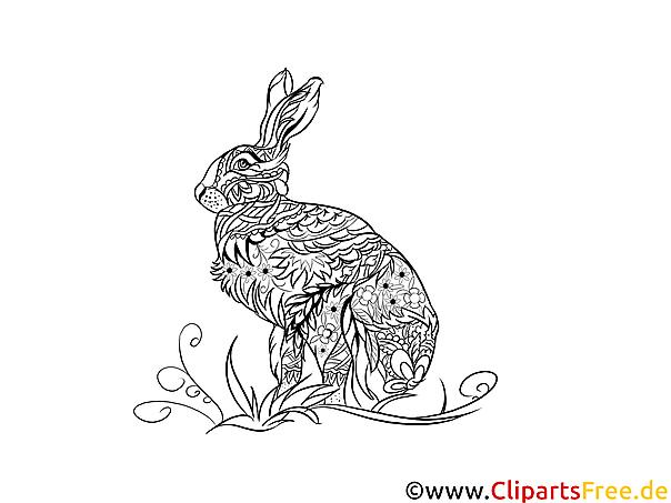 Malvorlage Für Erwachsene Kaninchen Hase Tier