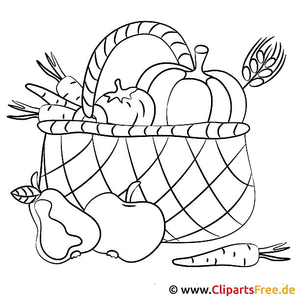 Korb mit Obst und Gemüse Ausmalbild online