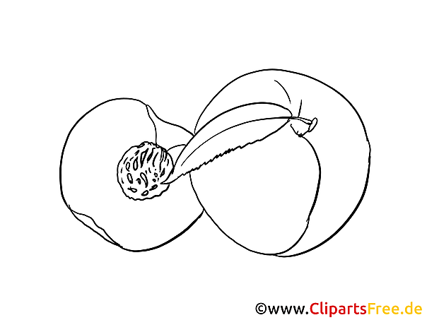 8013526187 likewise 63dd3149 Decd 4aea 856a 46126fd6f885 together with Rugby Ball Coloring Page 15687 also 4 1 3 1 The Circularradial Model as well Illustrazione Di Stock Frammento Della Statua Antica Image42911533. on 856