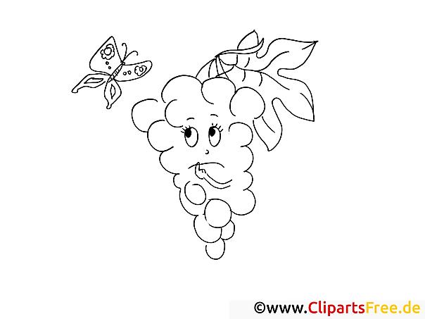 Traube Schmetterling Ausmalbilder Für Kinder Gratis