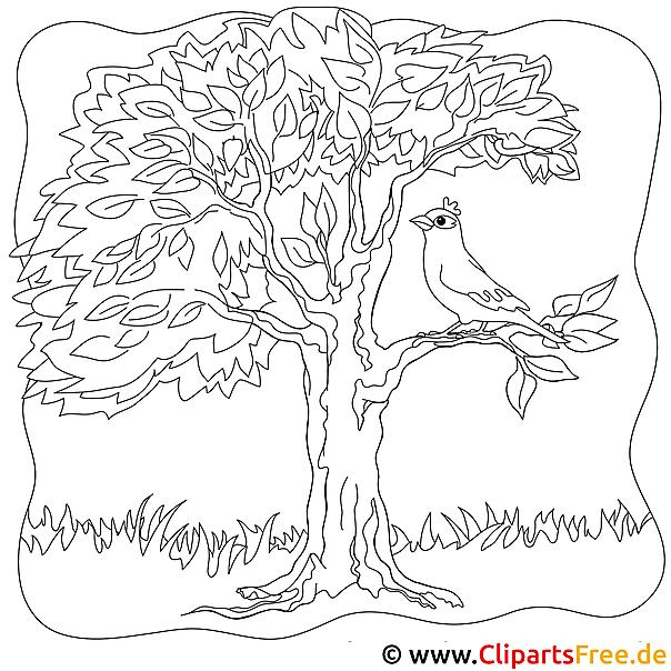 Ausmalbild Vogel auf dem Baum