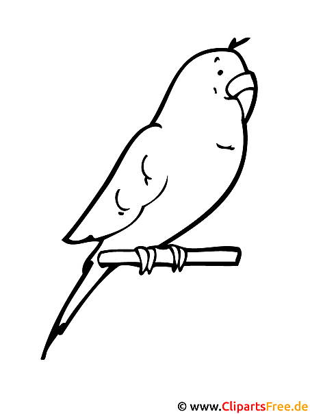 Papagei Malvorlage gratis