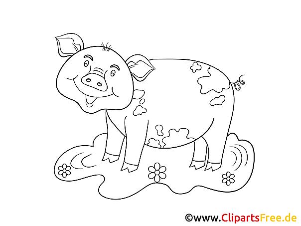 Świnia kolorowanka dla dzieci do wydrukowania
