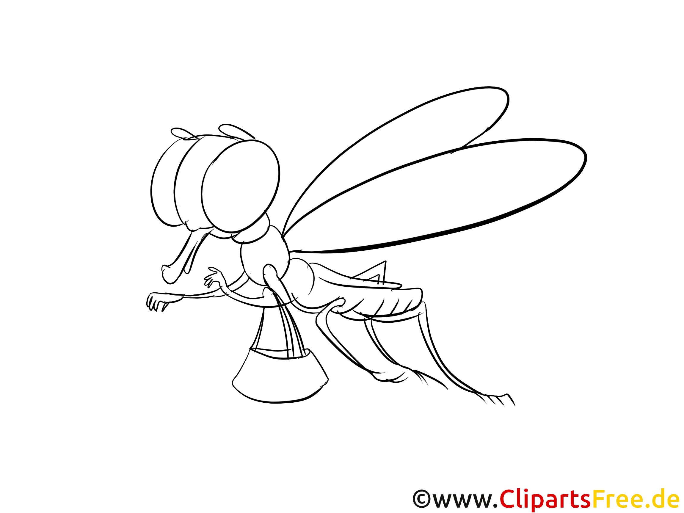 Libelle Bild Zum Ausmalen Kostenlos