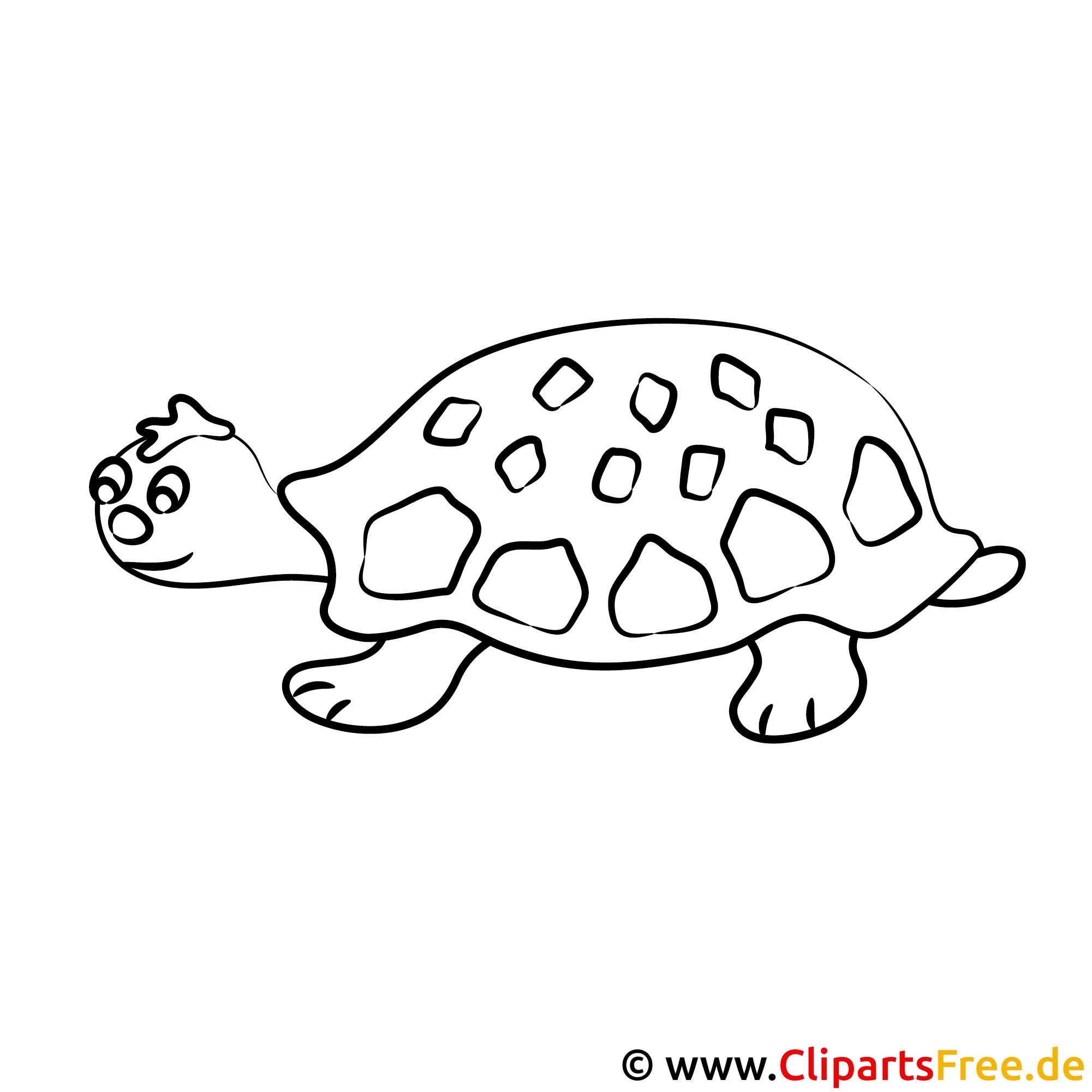 Schön Schildkrötenbilder Zum Ausmalen Ideen - Malvorlagen Von Tieren ...