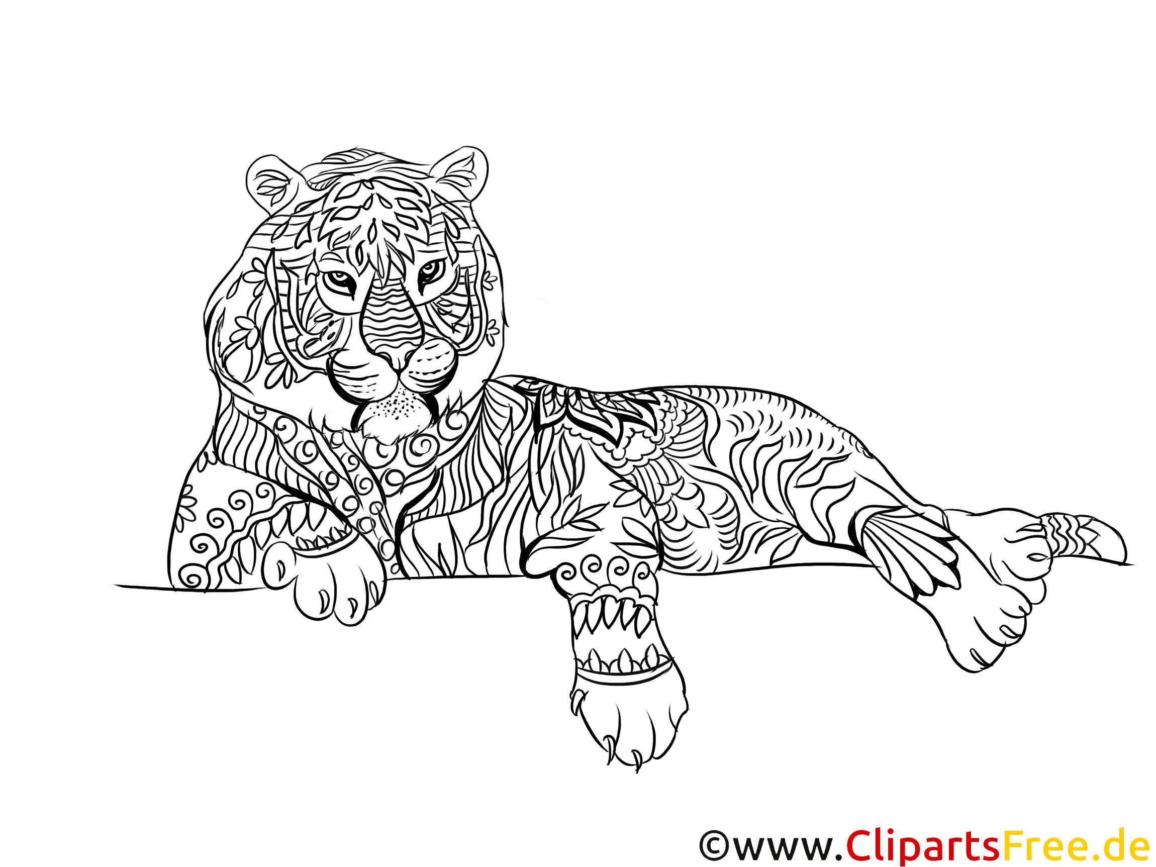 Tiger Kostenlose Malvorlage Für Erwachsene Zum Ausdrucken