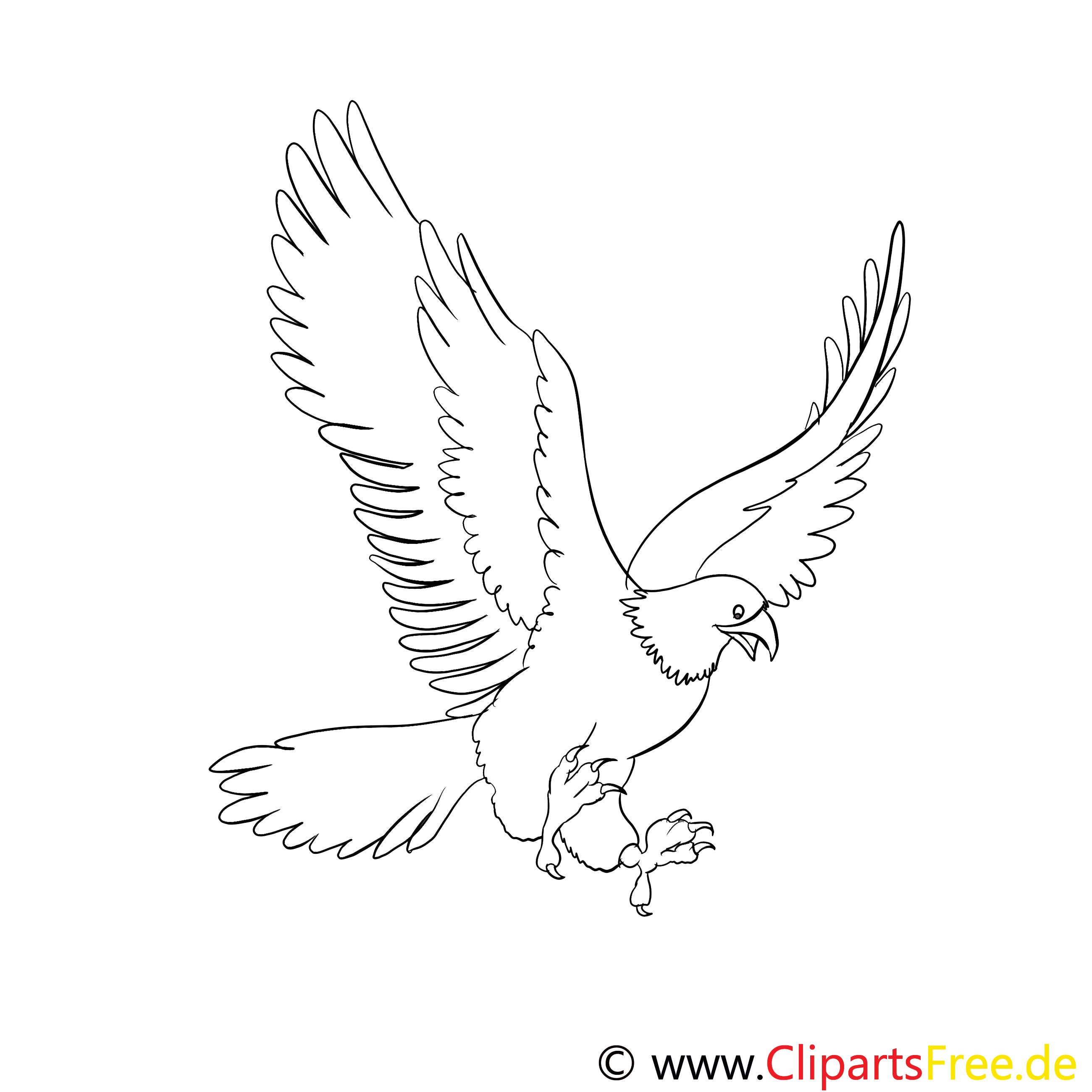 Malvorlagen Für Kinder: Adler Ausmalbilder Für Kinder Gratis