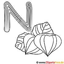 Nut - Buchstaben ABC