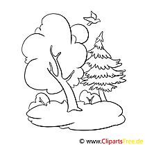 Wald, Bäume Malvorlagen kostenlos