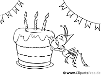Colorbook Birthday