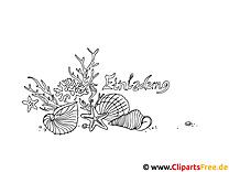 Muscheln Ausmalbild zum Ausdrucken und Ausmalen