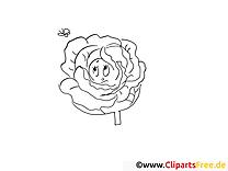 Cartoon-Kohl Malvorlage gratis zum Herunterladen und Ausmalen