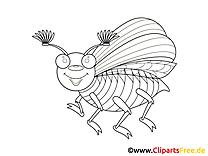 Böcek boyama sayfası hayvanlar