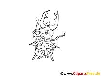 Käfer zum Ausmalen