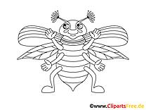 Kolorowanka dla dziewczynek chrząszcz