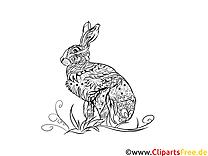 Malvorlage für Erwachsene Kaninchen, Hase, Tier