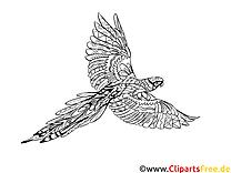 Malvorlage für Erwachsene Vogel