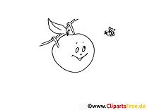 Apfel und Biene Ausmalbilder für Kinder gratis
