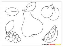 Ausmalbilder Früchte - Malvorlagen Kostenlos zum Ausdrucken