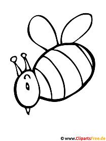 Biene Malvorlage gratis
