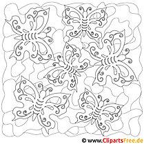 Schmetterlinge Malbild