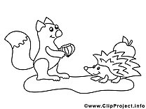 Asumalbild Eichhörnchen und Igel