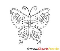 Ausmal Bild Schmetterling