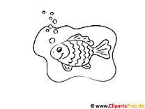 Goldfisch Bild zum Ausmalen und Ausdrucken