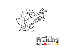 Grashüpfer Ausmalbild gratis