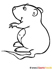 Hamster - Kinder Malvorlagen gratis