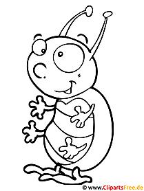 Käfer - Kinder Malvorlagen gratis