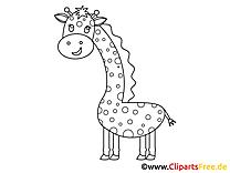 Kolorowanki do druku żyrafa