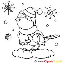 Vogel im Winter Ausmalbilder für Kinder kostenlos ausdrucken